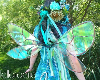 Bee Insect Fairy Bug Iridescent wings