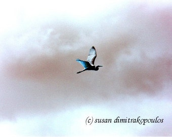 Fantasy Flight, Silberreiher, Wandkunst, Startseite, Kinderzimmer Dekoration, Foto, Geschenk 20, Vögel, großen weißen, Storch, Reiher, Fantasie, blau, weiß