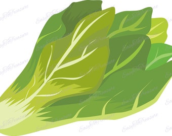 Digital Download Clipart – Lettuce Leafy Vegetable JPEG and PNG files