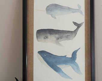 Watercolor of mammals