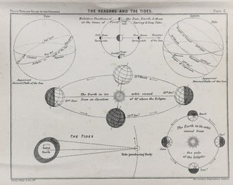 Antique Astronomy Print -  The Seasons and the Tides, Sun, Earth, Moon, Astronomical Print c. 1900
