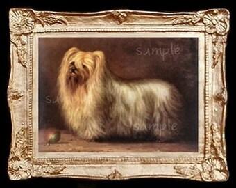 YorkshireTerrier Dog Miniature Dollhouse Picture Art 5135