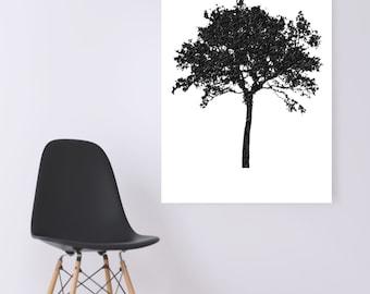 WATERCOLOR- Grey  Acacia Tree -Digital Wall Art