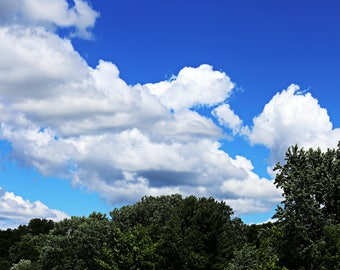 Clouds in the Sky Photography Print