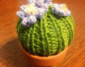 Tiny Knit Barrel Cactus