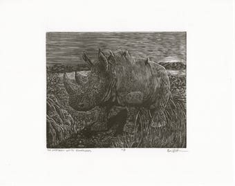 The Northern White Rhinoceros engraving - Limited Edition Print