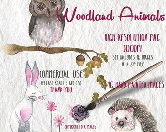 Woodland Animals Digital Clipart | Owl Hedgehog Rabbit | Hand Painted Watercolor | Personal & Commercial Use | PNG Images