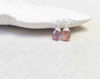 Strawberry Quartz Forensic Drops - 925 Sterling Silver Wire Wrapped Faceted Red Speckled Quartz Drop Earrings Unique Science Gift