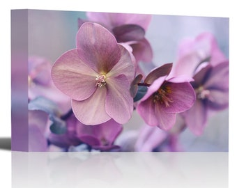 Purple Flower Blossom Close Up Nature Art Print Wall Decor - Canvas Stretched Framed