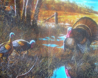 Fall is turkey time.  Check out the pictures on this great turkey panel.