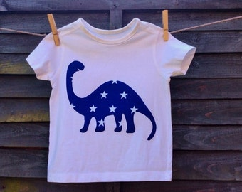 Boys Dinosaur t-shirt, Top.