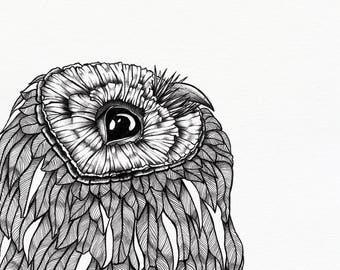 """Curious Owl art print – 10 x 12"""" unframed – animal illustration by Annabelle Archibald"""