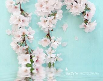 Cherry Blossoms Photo- Floral Still Life Photograph, Aqua White Botanical Print, Flower Photography, Cherry Blossoms Print, Spring Flowers
