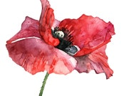 Red Poppy Painting - Prin...
