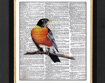 Robin Bird - Orange Robin Painting, Bird Decor, Bird Wall Prints, Vintage Birds, Vintage Dictionary page, Dictionary art, Dictionary print