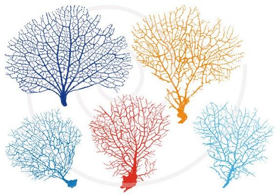 Sea fan coral silhouettes digital clipart clip art set for publicscrutiny Images