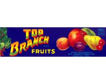 Top Branch Washington Crate Label