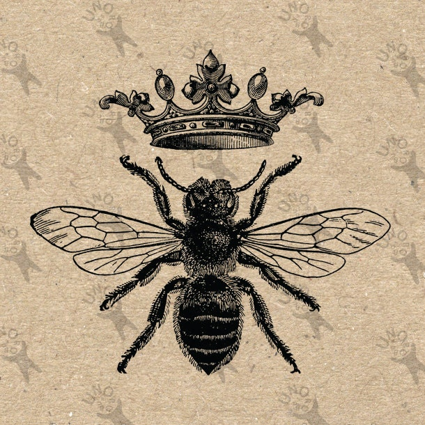 Vintage black and white image Queen Bee Queen Instant