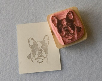 Ref. 78.  French bulldog portrait