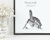 Painted Turtle Print | 8&...