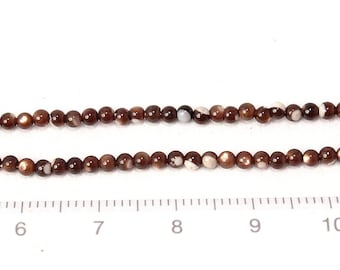 Mother of pearl brown shell beads 2mm 1string/G-0110