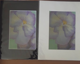 Don't Be a Pansy (PRINT)