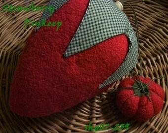 PDF  E Pattern INSTANT DOWNLOAD Reverse Strawberry Pincushion