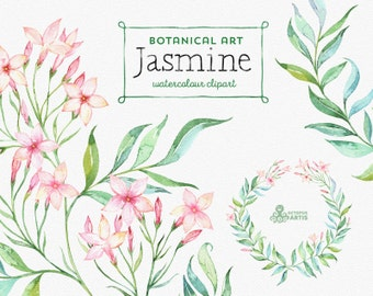 Jasmine. Botanical art. Floral Elements, wreath, branch, watercolor flowers, wedding invitation, greeting card, diy clip art, mint and pink