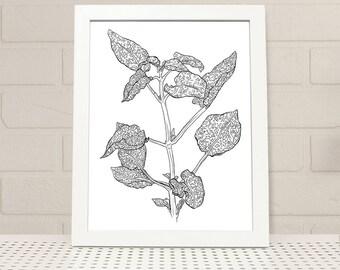 Polka Dot Plant Printable Wall Art INSTANT DOWNLOAD, polka dot plant print, digital print, illustration, plant print