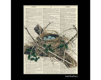 Vintage Illustration Robins Bird Nest Dictionary Art Print Book Page Art No. P7