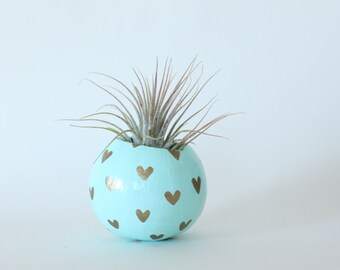 Air Plant Planter with Air Plant - Aqua with Gold Hearts.  Valentine's Day / Mother's Day Gift. Love Gift. Heart Planter. Gold Heart