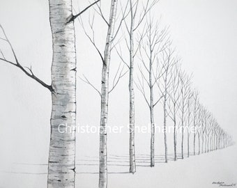 Classic Landscape Watercolor Painting 12x16 in. Birch Trees by Award Winning Artist Christopher Shellhammer.