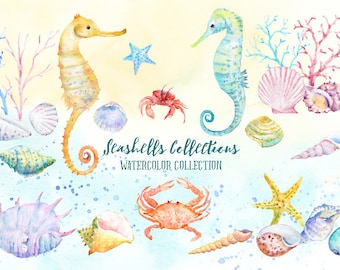 Watercolor Clipart Seashell Collection - seashells, crabs, star fish, seahorse, coral, pebbles, seashell clip art, instant download