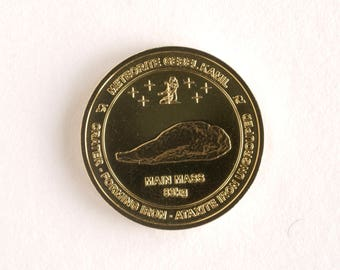 Meteorit Medaille Münze, Meteorit Gebel Kamil Gedenkmünze, Nordic Gold Münze, Geschenk für Männer Astronomen Meteoriten Sammler Space Fans