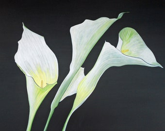 acrylic painting calla lilies