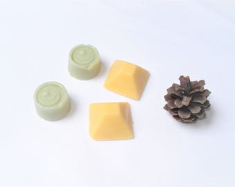 """Deodorant bar 2 """"Mint"""" and """"Coconut and Orange"""" - fragrances with essential oils"""