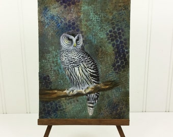 Owl Painting, Short Eared Owl on Blue Mixed Media 6 x 8 Wild Bird Original Art