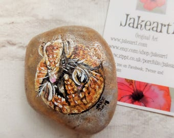 Armadillo painted stone, wildlife art, gift for him, free postage, armadillo, ornament, painted pebble , painted stone, paperweight, stone