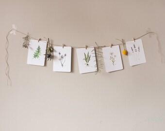 Set postcards, watercolors, 5 pieces, botanical, nature, decoration