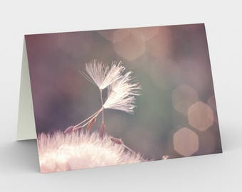 Pink Dandelion Card, Blank Note cards, Nature Note Cards, Greeting Cards, Three Note Cards, 5x7 Cards, Nature Blank Card, All Occasion Cards