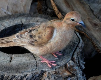 Needle Felted  Bird . Mourning dove. Life size .Made to order