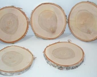 """Birch Wood Slice with Bark 8"""" to 8 1/2"""" diameter x 1"""" thick.  Set of Five"""
