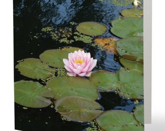 Waterlillies - single blank card, Gifts for her, Gifts for mom, Gifts for nature lovers