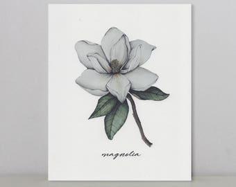 Magnolia | Mis-Printed Art Print