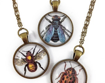 Bug, Bee & Fly pendant necklace // antique brass necklace // vintage inspired // handmade // ready to ship