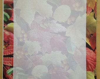 8.5x11 Fall Leaves Framed Paper