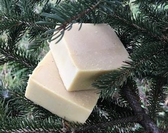 Walk in the Woods - Milk Soap