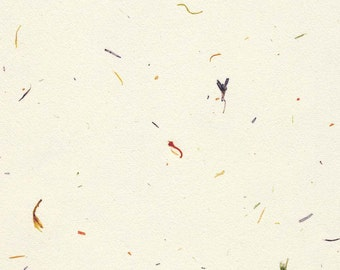 Benibana - white with delicate Japanese flower petals, 5 letter sized sheets