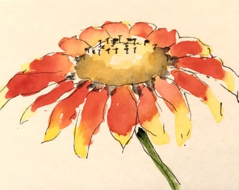 Greeting Cards: Mexican Blanket Wildflower with Pen and Ink, Set of 4 Blank Note Cards, 4.25x5.5 inches