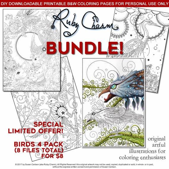 BIRDS BUNDLE Download Print And Color Birds Including A